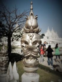 detail d'un crane au temple blanc