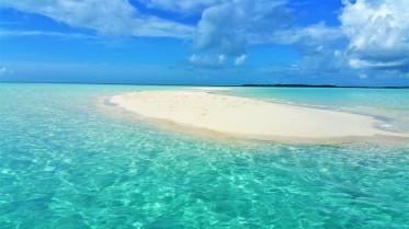 paradise island excursion nassau in bahamas