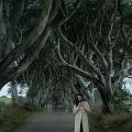 telombre aux dark hedges en irelande