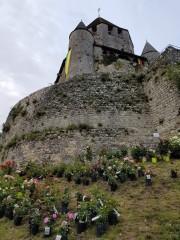 la tour césar festival de provins