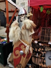 Festival Medieval de Provins (47)