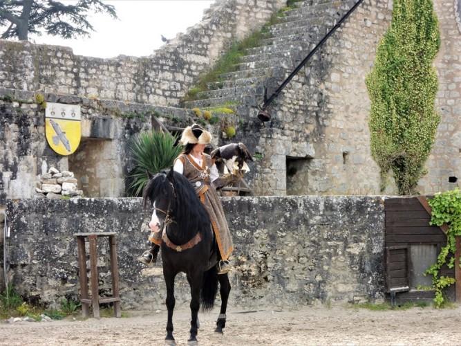 festival medieval de provins spectacle rapace