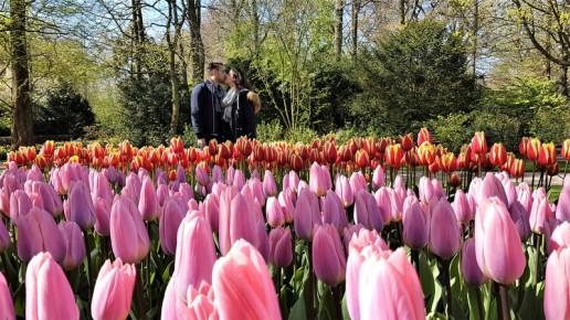 keukenhof-parc-lisse-holland-netherlands-tulips (13)