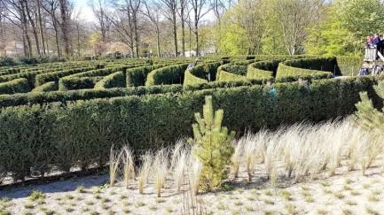 keukenhof-parc-lisse-holland-netherlands-tulips (14)