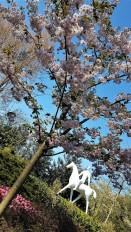 keukenhof-parc-lisse-holland-netherlands-tulips (5)