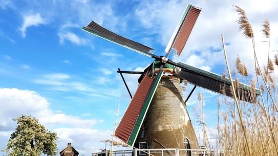 mill in nederland