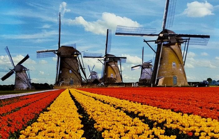 netherlands trip (41)