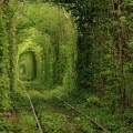 Le tunnel de l'amour à Klevan en Ukraine