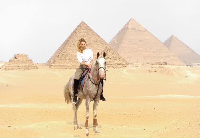matea horse pyramides de gizeh cairo egypt