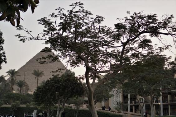mena house hotel egypte