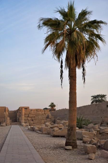 Temple-Amon-Karnak-Louxor_Croisiere_Egypte (27)