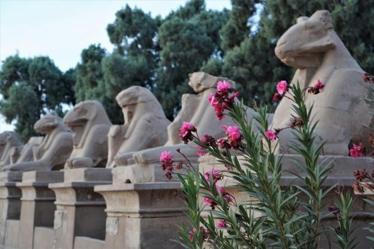 Temple-Amon-Karnak-Louxor_Croisiere_Egypte (36)