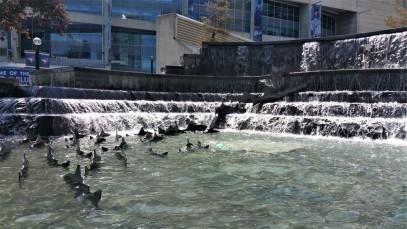 Trip Canada Ontario blog niagara (18)